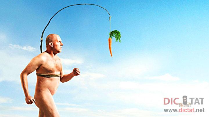 здоровый образ жизни 2014