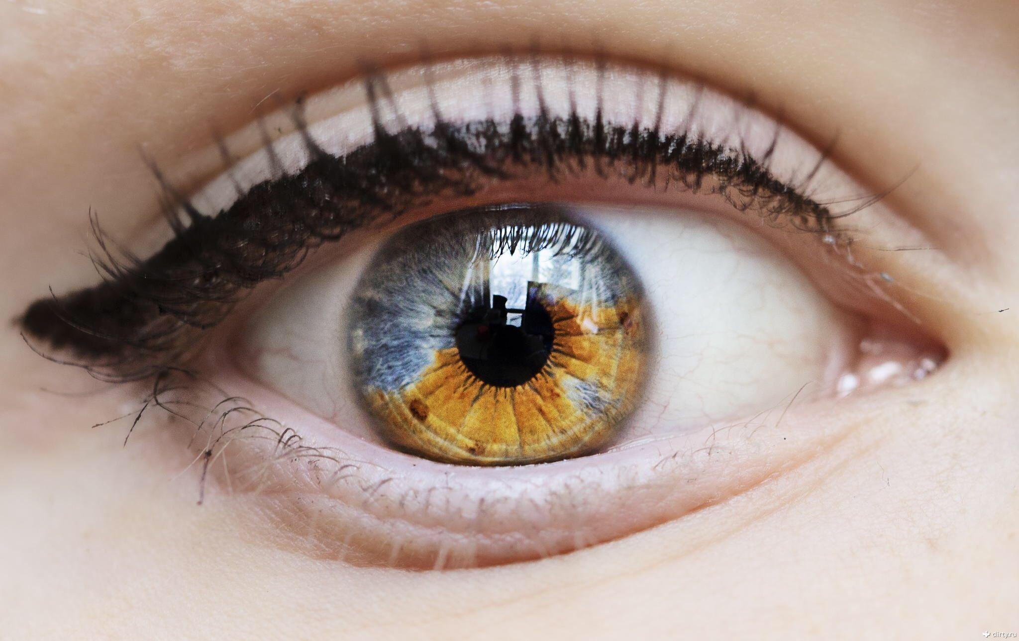 Зеленые глаза разных цветов